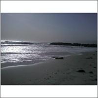 Beachevening